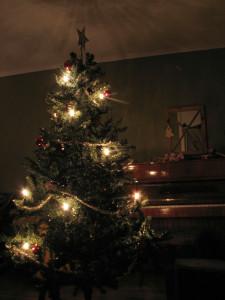 christmas-tree-1443555-639x852