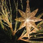 star-1527818-640x480