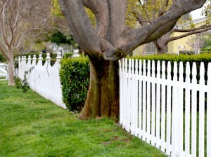 fence-series-8-1202380-639x476